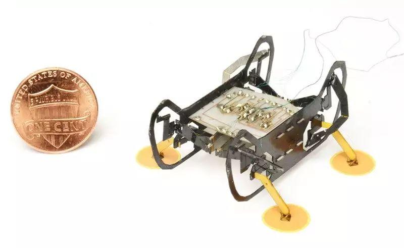 """哈佛微型机器人HAMR学会 """"踩电门""""工作,检查复杂机器变得更简单"""