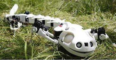 仿生|好强大的仿生机械,这才是真正的黑科技!